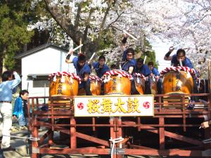 釜石桜まつり3