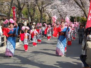 釜石桜まつり2