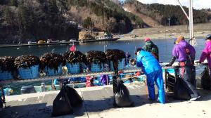 唐丹の漁業の一年・春