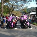釜石桜祭り